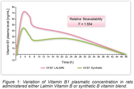 維生素B群-吸收-1