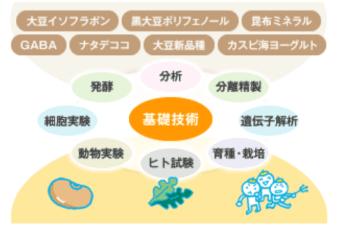 日本黑豆推薦品牌