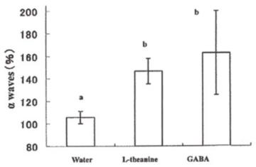 GABA功效提升α波幫助放鬆