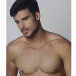 Mister Brazil 2015