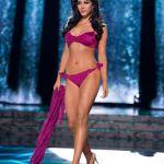 Miss Universe 2015 Swimsuit