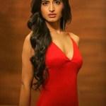 Vinali Bhatnagar will represent Chattisgarh at Fbb Colors Femina Miss India 2017