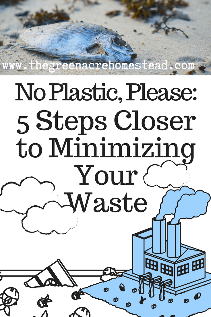 No Plastic, Please_ 5 Steps Closer to Minimizing Your Waste (2)