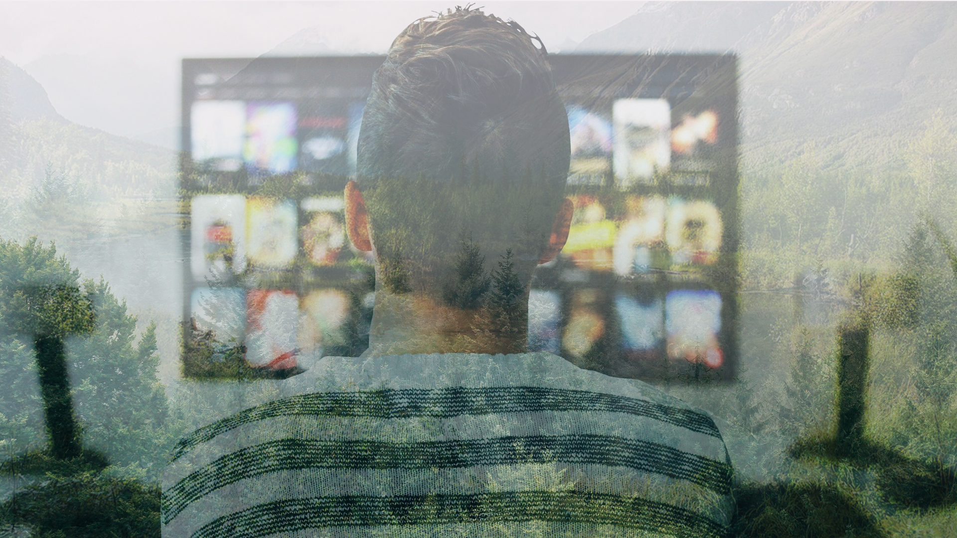 streaming video e ambiente