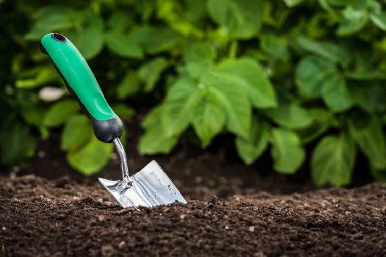 How To Make The Perfect Soil Mix