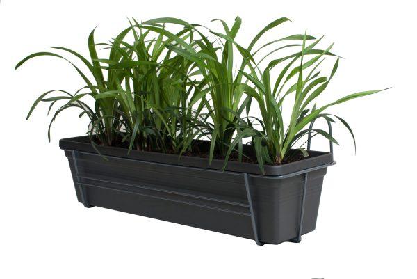 Leliegras in ELHO Green Basics balkonbak