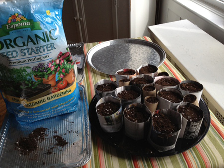 organic soil and newspaper and toilet paper seedling pots