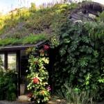 Por que ter um Sistema de Ecoesgoto em casa