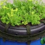 Como fazer uma cisterna para reduzir sua conta de água