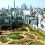 Tóquio tem hortas urbanas nas estações de metrô