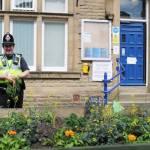 Cidade mantém hortas públicas para moradores colherem alimentos de graça