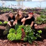 Capão Redondo ganha horta de 80m² para moradores colherem alimentos de graça