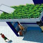 Conheça a cidade brasileira que terá pontos de ônibus com teto verde e energia solar