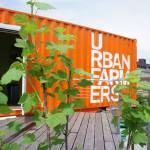 Empresa suíça vai cultivar orgânicos no topo dos prédios de São Paulo
