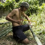 5 motivos para você se engajar em hortas urbanas comunitárias