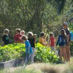Escola da Califórnia tem merenda vegana (e é considerada melhor restaurante verde do mundo)