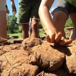 Quer aprender técnicas de bioconstrução para erguer sua própria casa? Ecovila oferece curso!