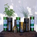 Garrafas de vinho são transformadas em vasos superestilosos para cultivar ervas. Veja fotos e inspire-se!