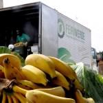 No Paraná, cidadãos podem trocar recicláveis e pneus usados por frutas, verduras e legumes frescos