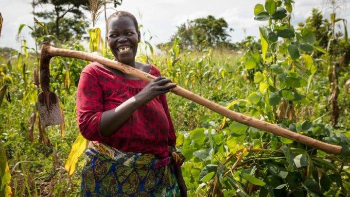Permacultura empodera mulheres e alimenta 6 mil famílias refugiadas na Uganda