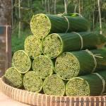 Empresa usa capim para fabricar canudos biodegradáveis no Vietnã