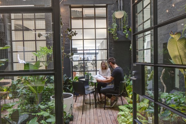 man and woman green office wellbeing