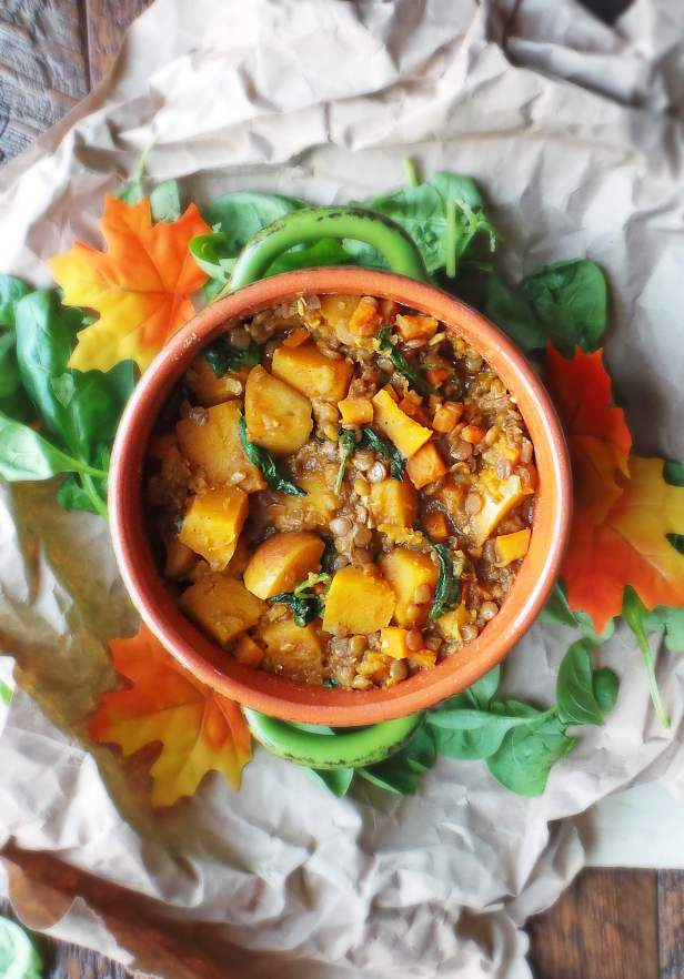 Vegan Curried Butternut Squash and Lentil Stew