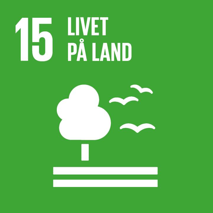 Verdensmål 15 - derfor planter vi flere træer