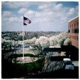 Spring has sprung at the VA!