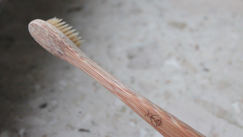 the green walnuts - zero waste toothbrush
