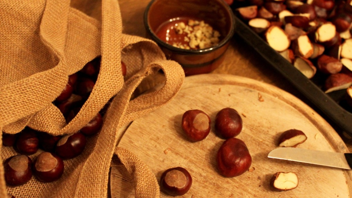 how to use horse chestnuts to wash your clothes | natural laundry detergent