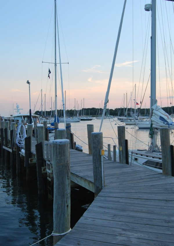 A Day with GG In: Stonington