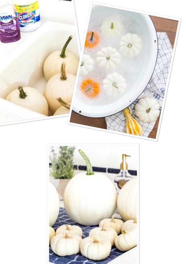 1, 2, 3 Easy Steps 2 Preserve Those Gourds!
