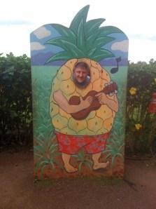 Pineapple randy small