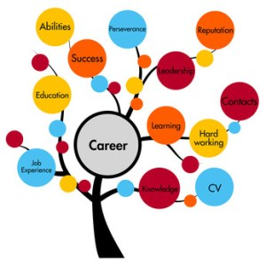 Equine Careers - get that equine job application accepted!