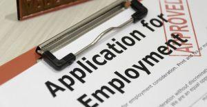 Equine Job Application Tips - Caroline Carter Recruitment Ltd - The Grooms List