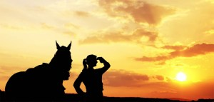Job Longevity and Employment in the Equine Industry - The Grooms List