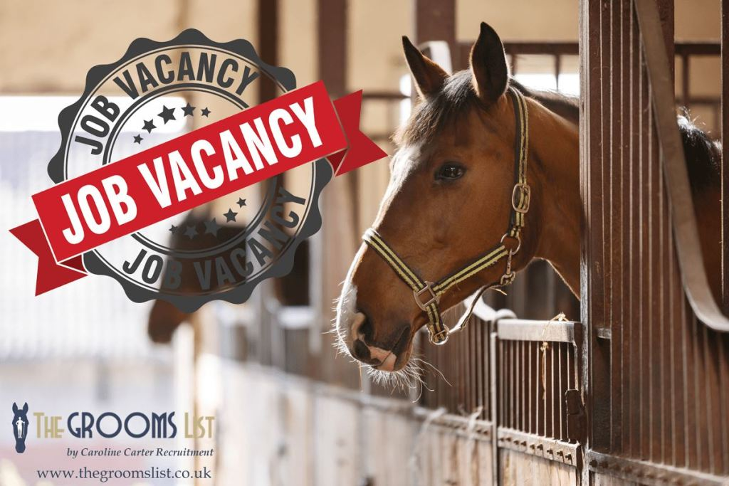 Advertise-an-equine-job-vacancy-The-Grooms-List-by-Caroline-Carter-Recruitment-Ltd
