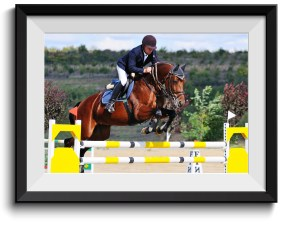 Christmas gift ideas for horse lovers - Personalised Picture