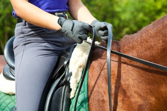 Christmas gift ideas for horse lovers - Riding Lesson