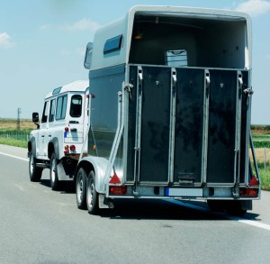 Christmas Stocking Fillers for Horse Lovers - Vouchers for HGV or Trailer Driver Training
