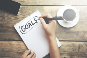 New Years Resolutions for Equestrian Jobseekers - set career goals