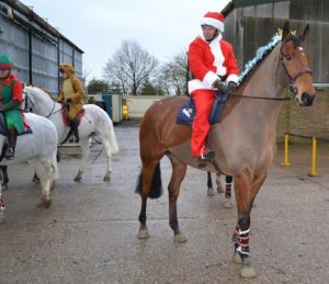 Tips for Grooms Working with Horses at Christmas - ideas of things to do