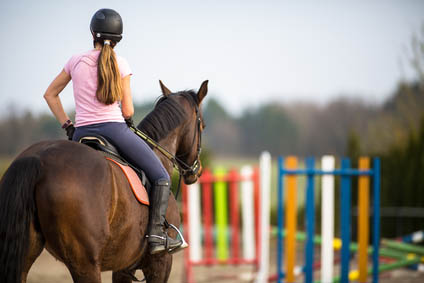 Equine Apprenticeships - Invaluable Education or Slave Labour - Building your equine career