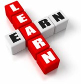 Equine Apprenticeships - Invaluable Education or Slave Labour - Earn while you learn