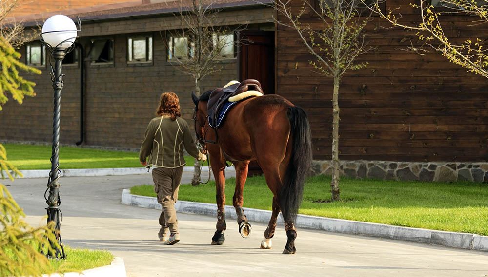 10 Steps to recruiting an everyday Super Groom
