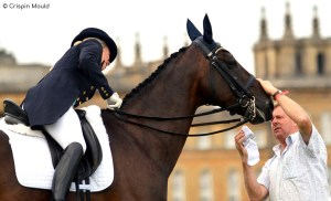 Competition Grooms - A life on the go