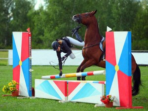 Competition Grooms - the lows of the job