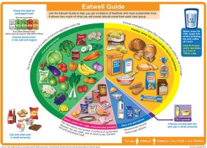 Feeding YOURSELF for performance - healthy eating for equine grooms - Healthy Food Chart