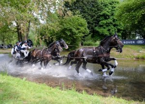 The ultimate guide to the Royal Windsor Horse Show - Driving